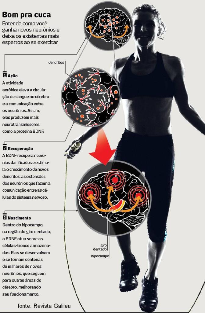 Praticar exercicios melhora a memoria e aprendizagem