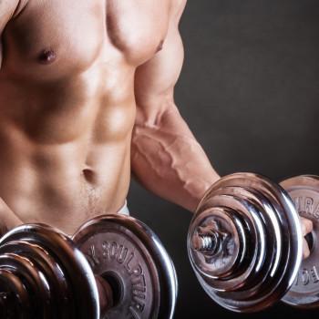 sistema-montagens-series-musculacao